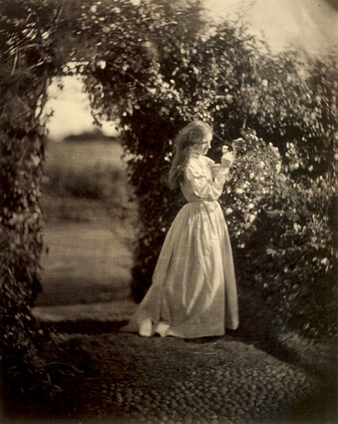 Julia Margaret Cameron From The Bygone