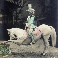 A Photo Collection of Vintage Circus Performers