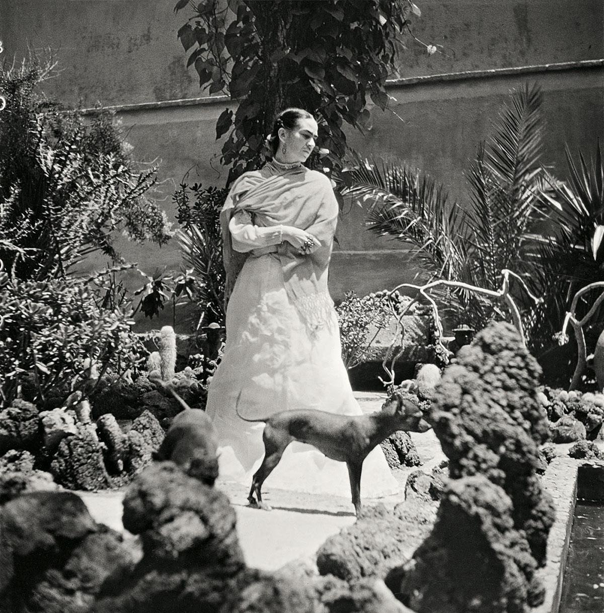 frida kahlo from the bygone. Black Bedroom Furniture Sets. Home Design Ideas