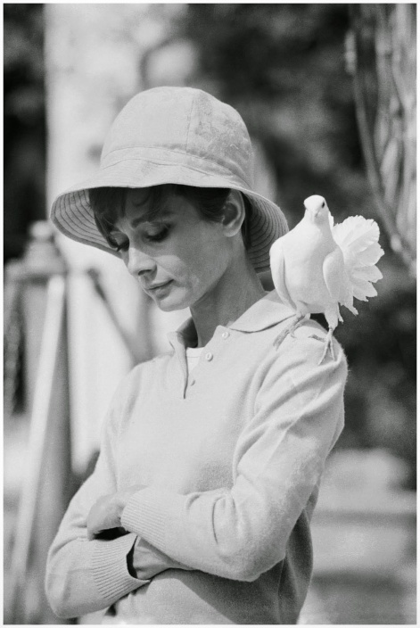 Audrey Hepburn with dove, St Tropez, 1967