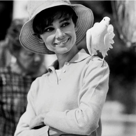 hepburn_dove_smiling_1