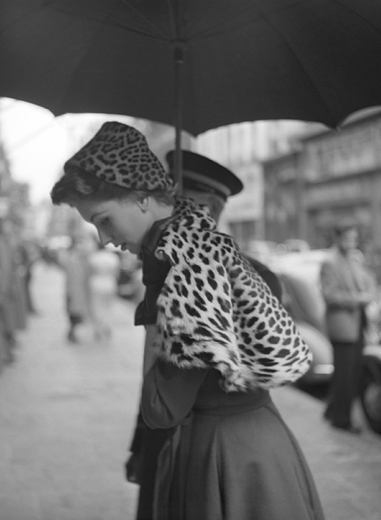 suzy parker by dambier