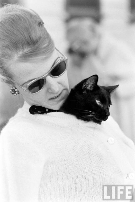 The Black Cat Audition | FROM THE BYGONE
