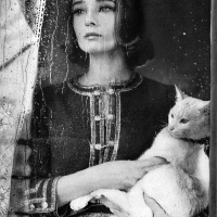 Audrey Hepburn and The Cat by Richard Avedon (1959)