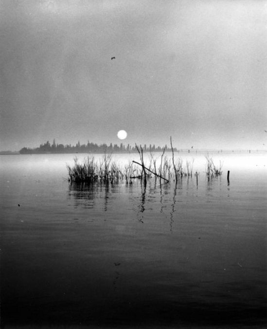 The-Lagoon-Venice-1961-by-Edwin-Smith-C29575