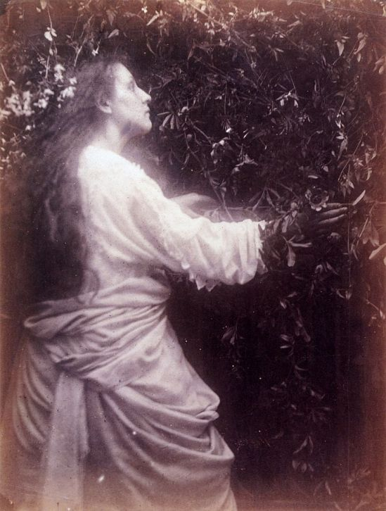 800px-Mary_Ann_Hillier,_by_Julia_Margaret_Cameron