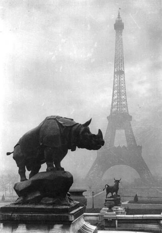 The-Eiffel-Tower-in-the-background-1920-by-Pierre-Yves-Petit-640x919